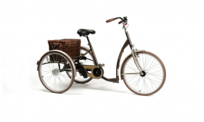 Tricycle adulte handicap Vintage