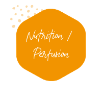 Nutrition / perfusion | HMS
