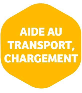 Aide au transport, chargement Handicar | HMS